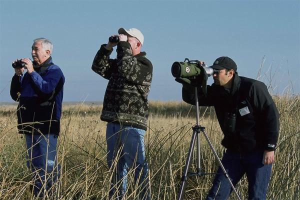 birdwatching agriturismo farmhouse podere il leccio