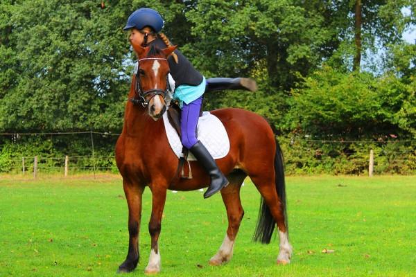 equitazione agriturismo farmhouse podere il leccio maremma toscana