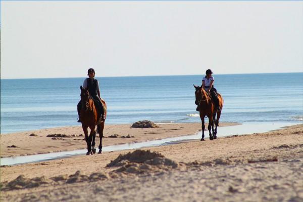 escursioni a cavallo horse agriturismo farmhouse podere il leccio maremma toscana