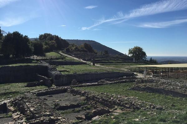 etruschi roselle arte cultura agriturismo farmhouse podere il leccio