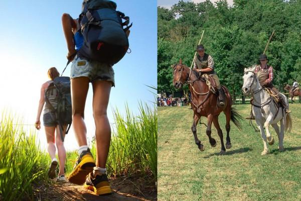horse cavalli butteri trekking agriturismo farmhouse podere il leccio