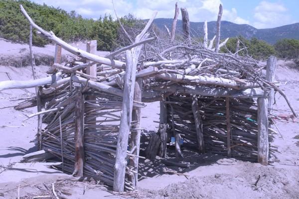 spiagge beach agriturismo farmhouse podere il leccio